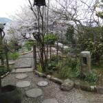 茶道教室庭園7